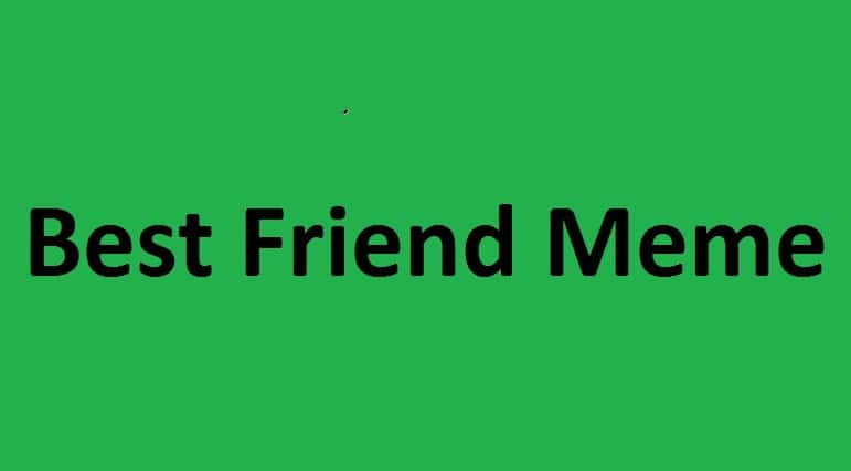 Best Friend Meme – Memes That You Can Send To Your Friend